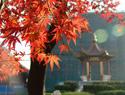 南京航空航天大学  校园一角