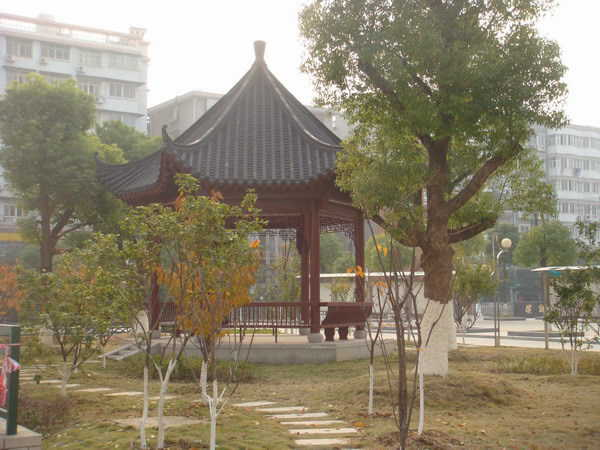 武汉初级中学武汉初级中学校园相片
