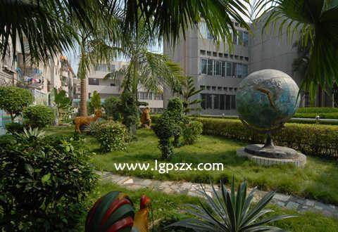 深圳市龙岗区坪山中心小学赣州哪些私立有小学图片