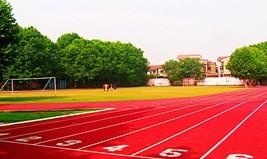 武汉市陆家街中学武汉市陆家街中学校园图片