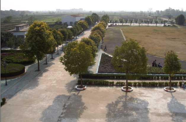 武汉市蔡甸区张湾中心小学武汉市蔡甸区张湾中心小学校园相片
