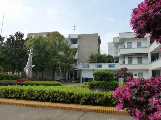 蔡甸区大集中心小学蔡甸区大集中心小学校园风光