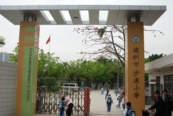 深圳市龙岗区南湾街道沙湾小学校园风景|深圳