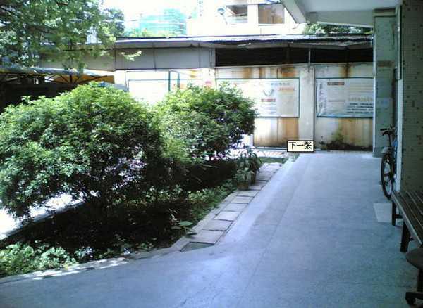 广州市白云区人和镇第二中学校园风景|广州市白云区