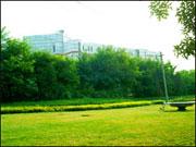 大港区实验中学大港区实验中学校园图片