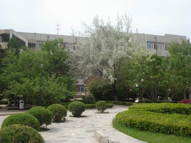 张家口市第二中学初中茸松江梅上图片