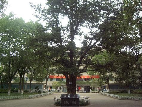 安庆市第一中学安庆市第一中学校园图片