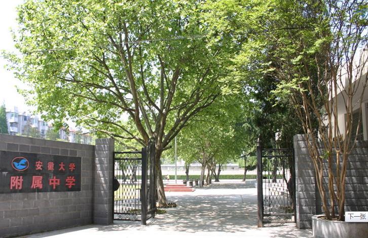 安徽大学附属学校校园风光