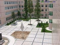 襄樊市第八中学襄樊市第八中学校园相片