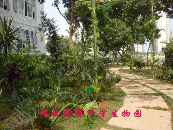 福清市康辉中学福清市康辉中学校园相片
