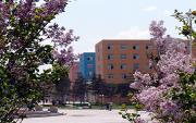 吉林化工学院  校园一角