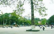 中山大学http://school.edu63.com/uploadfile/2007040611110048_thumb.jpg