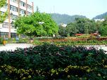 重庆邮电大学cy1
