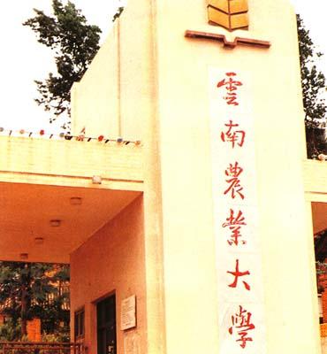 云南农业大学shibenzhi
