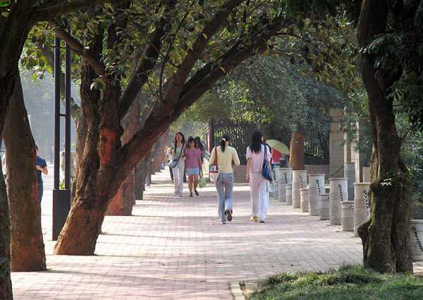 广西大学8