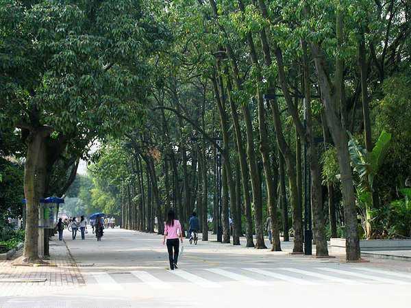 广西大学9