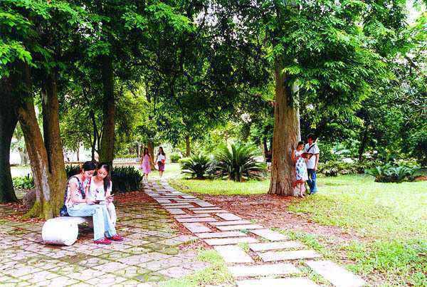 广西大学7