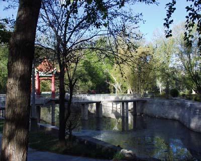 西藏大学20050614002947140