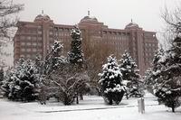 内蒙古大学nd3