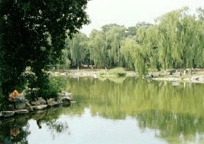 北京大学{98BA0446-6D0F-4551-B78A-0C0EF7C5B951}0