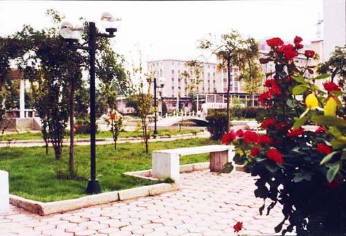 天津农学院10871993260151