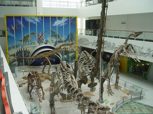 北京科技大学恐龙馆