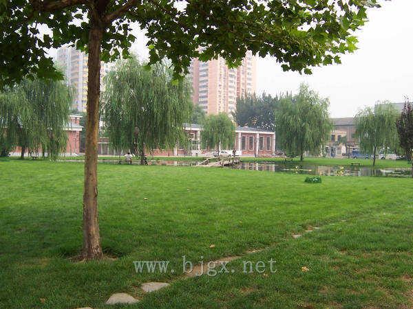 对外经济贸易大学草坪幽径