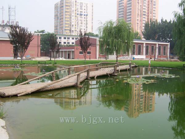 对外经济贸易大学池上小桥