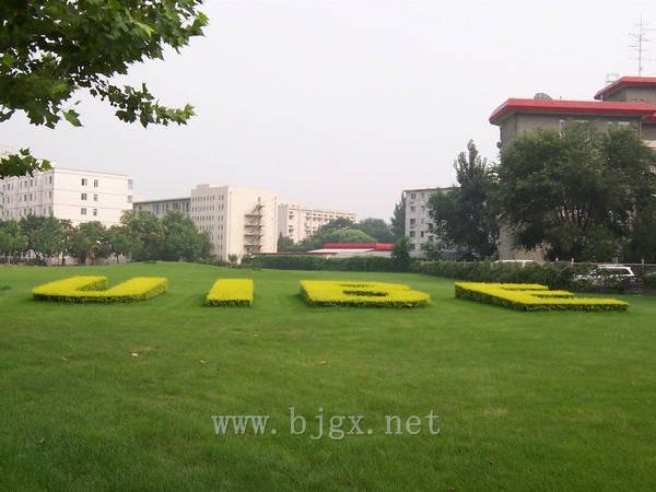 对外经济贸易大学门后草坪