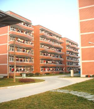 宁波万里国际学校中学校园风景 宁波万里国际学校中学排名,风景,地