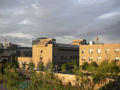 中央美术学院8
