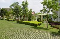 玉溪师范学院1177484113_mini