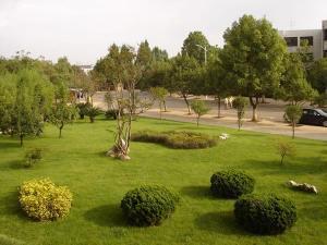 西南林学院20060613121511750_s
