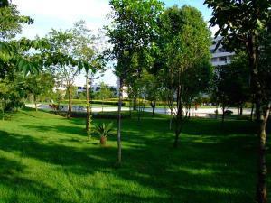 西南林学院20060613121718384_s