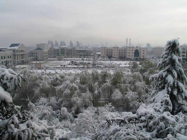 西安外国语大学冬天校园雪景
