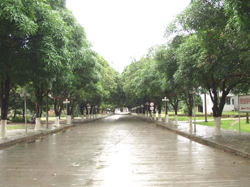 广西农业职业技术学院校园风景|广西农业职业技术学院