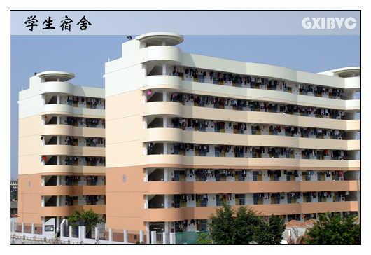 广西国际商务职业技术学院06061714287409