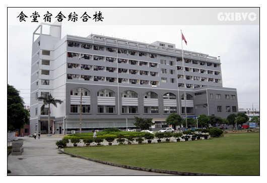 广西国际商务职业技术学院06061715187315