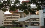 青岛大学  校园一角
