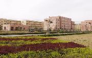 北京城市学院  校园一角