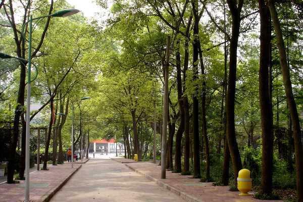 重庆青年职业技术学院200852120850225