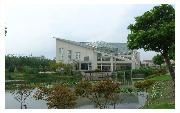 上海交通大学  校园一角