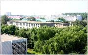 沈阳农业大学  校园一角