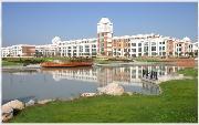 温州医科大学仁济学院           河畔堤岸