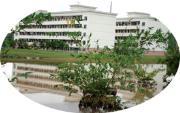 广西东方外语职业学院  校园一角