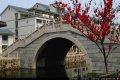 江南大学http_imgloadCAC253...