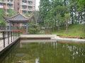 上海理工大学上海理工大学湖畔