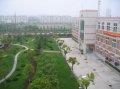 上海理工大学上海理工大学远眺