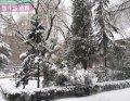 北京建筑工程学院北京建筑工程学院雪...