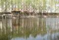 北京物资学院北京物资学院湖